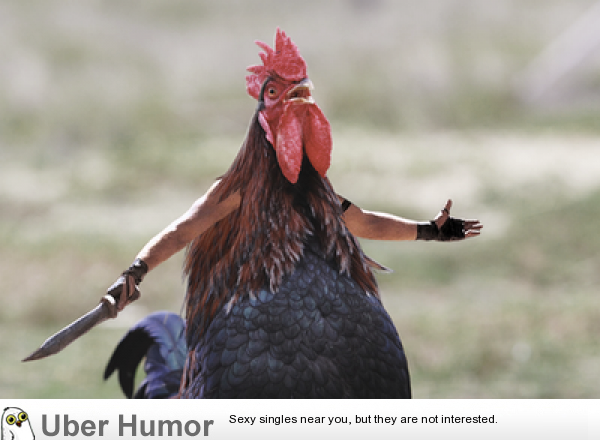 "Googled ""angry chicken"" and got this masterpiece 
