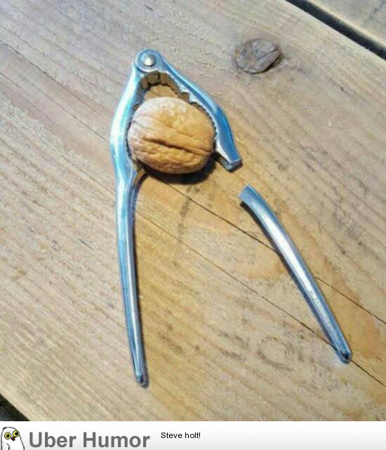 German Walnut Vs A Chinese Nutcracker Funny Pictures